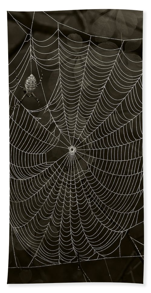 Arachnid Beach Towel featuring the photograph Web Master by Ron Jones