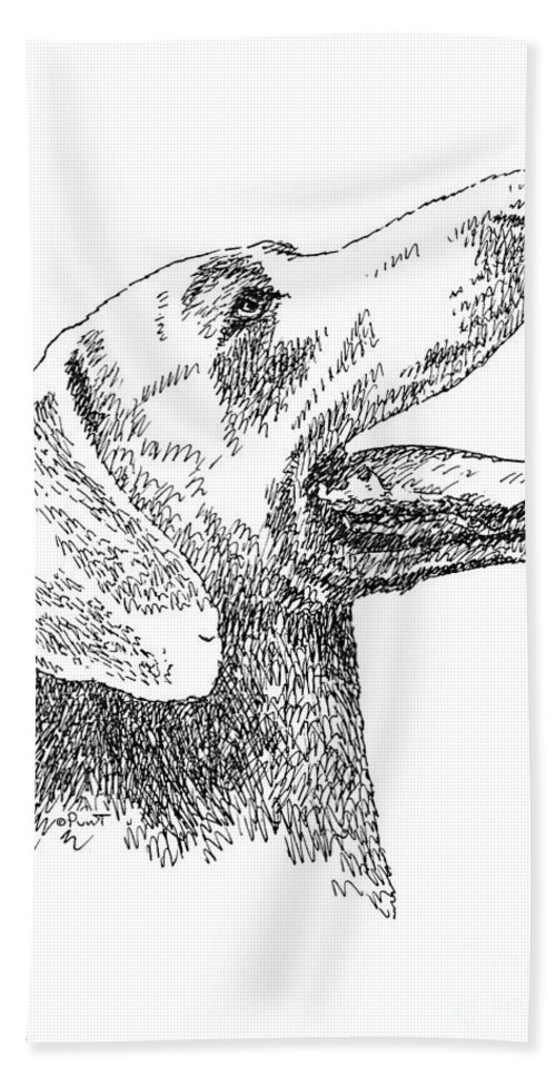 Weimaraner Beach Towel featuring the drawing Weimaraner-drawing by Gordon Punt