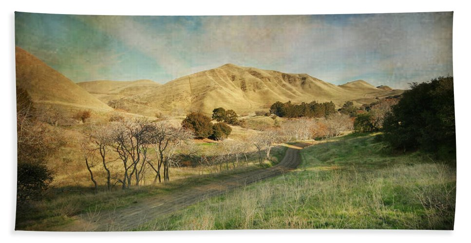 Black Diamond Mines Beach Towel featuring the photograph We'll Walk These Hills Together by Laurie Search