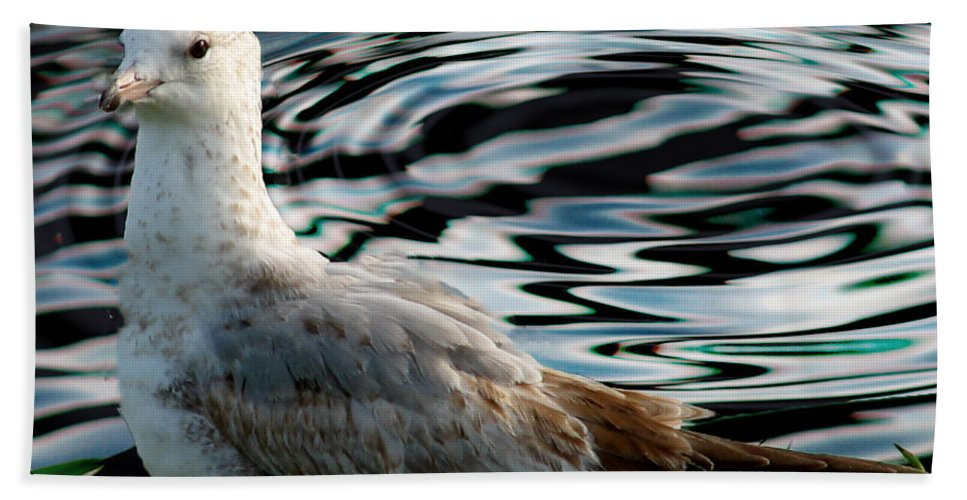 Ga Beach Towel featuring the photograph Whatcha Lookin At by Ericamaxine Price