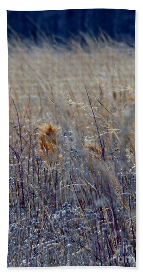 Fields Beach Towel featuring the photograph Wheat by Art Dingo