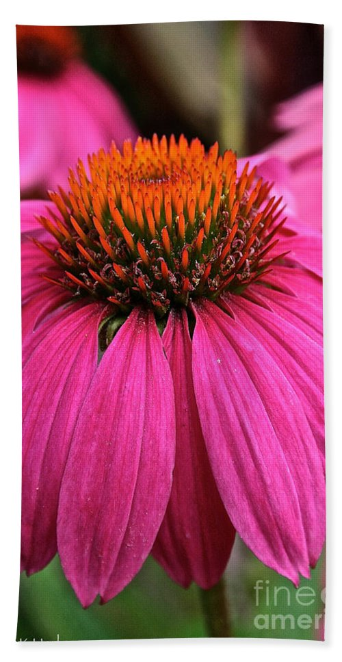 Plant Beach Towel featuring the photograph Wild Berry Purple Cone Flower by Susan Herber