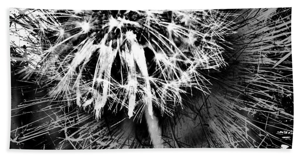 Jerry Cordeiro Framed Prints Beach Towel featuring the photograph Wild Eyes by The Artist Project
