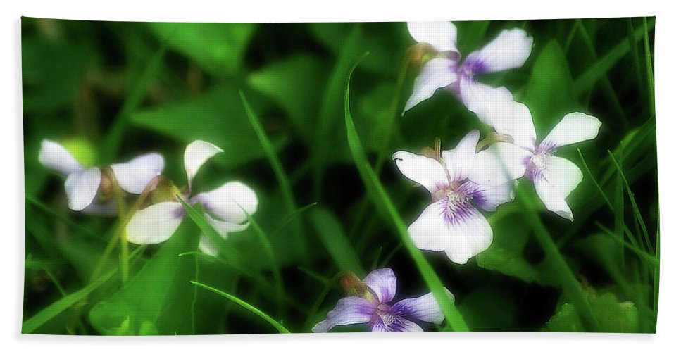 2d Beach Towel featuring the photograph Wild Flowers by Brian Wallace