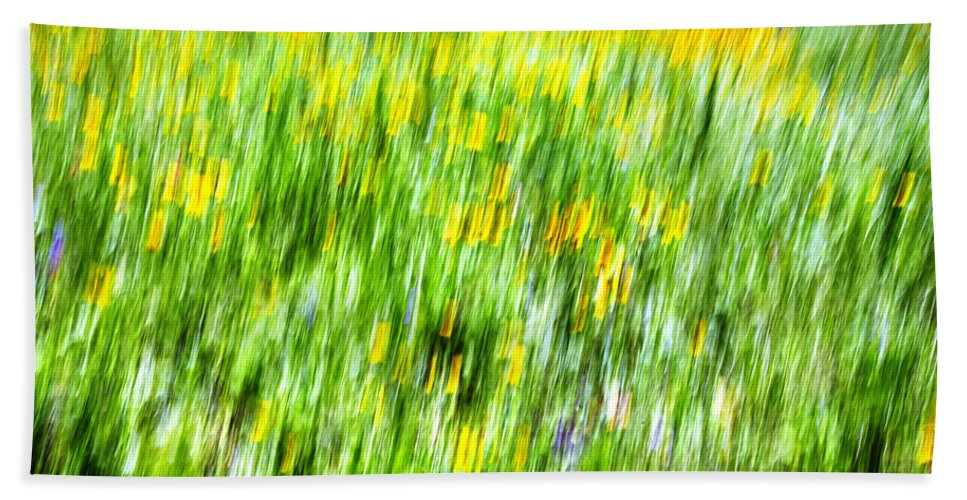Abstract Beach Towel featuring the photograph Wildflowers And Wind by Skip Nall