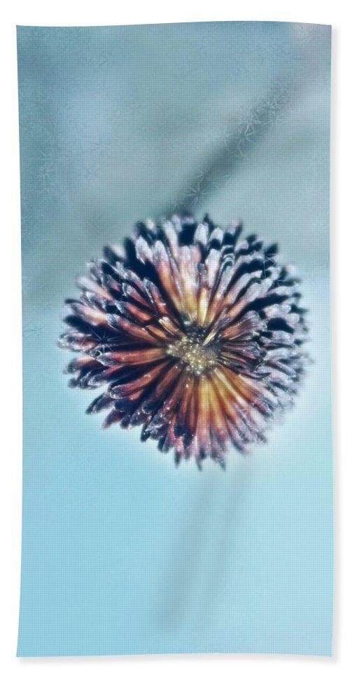 Photography Beach Towel featuring the photograph Winter Blues by Linda Sannuti