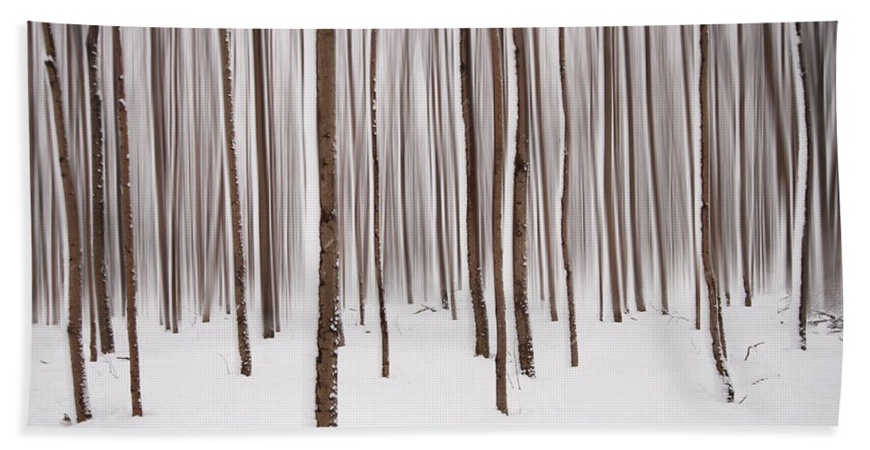 Winter Beach Towel featuring the photograph Winter by Mircea Costina Photography