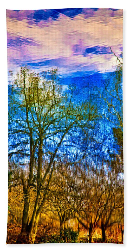 Pond Beach Towel featuring the photograph Winter Reflection by Chris Lord