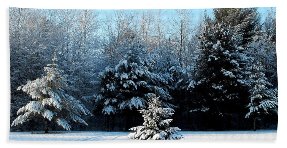 Landscape Photograph Beach Towel featuring the photograph Winters Beauty by Ms Judi