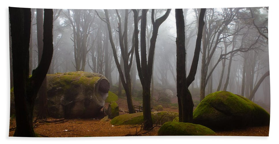 Forest Beach Towel featuring the photograph Wonderland by Jorge Maia