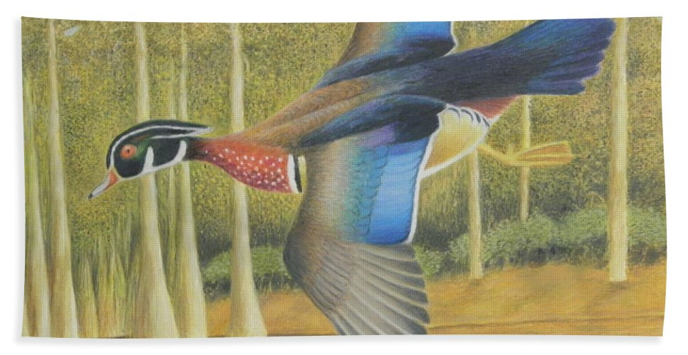 Wood Duck Beach Towel featuring the painting Wood Duck Flying by Alan Suliber