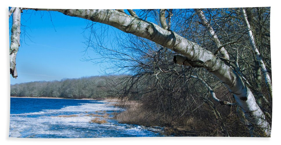 Worden's Beach Towel featuring the photograph Wordens Pond Winter by Steven Natanson