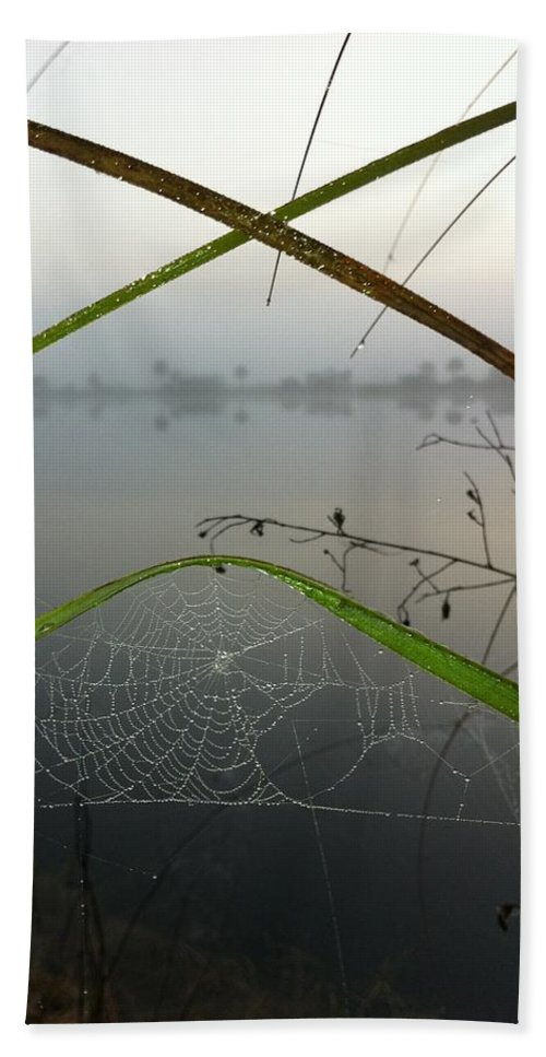 Web Beach Towel featuring the photograph Xceptional by Kimberly Mohlenhoff