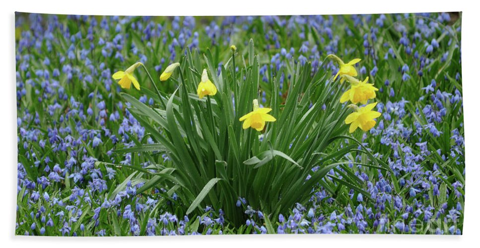 Green Beach Towel featuring the photograph Yellow And Blue Flowers by Ronald Grogan