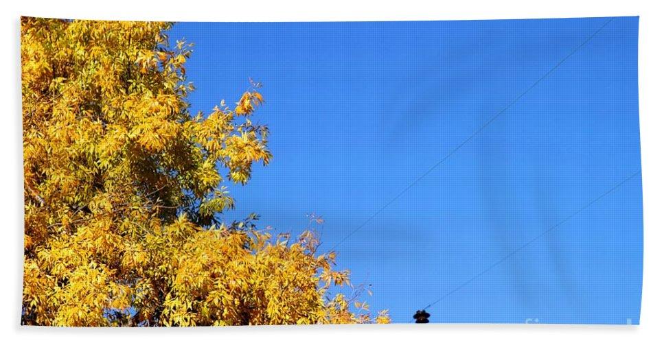 Tree Beach Towel featuring the photograph Yellow Autumn Tree by Henrik Lehnerer
