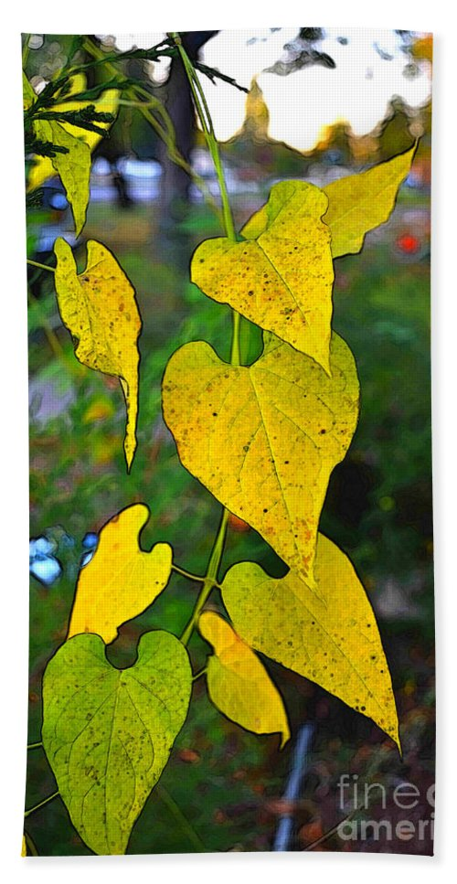 Leaves Beach Towel featuring the photograph Yellow Heart Leaves Photoart I by Debbie Portwood