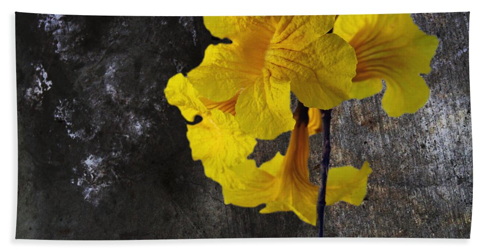 Art Beach Towel featuring the photograph Yellow Trumpet by Skip Nall