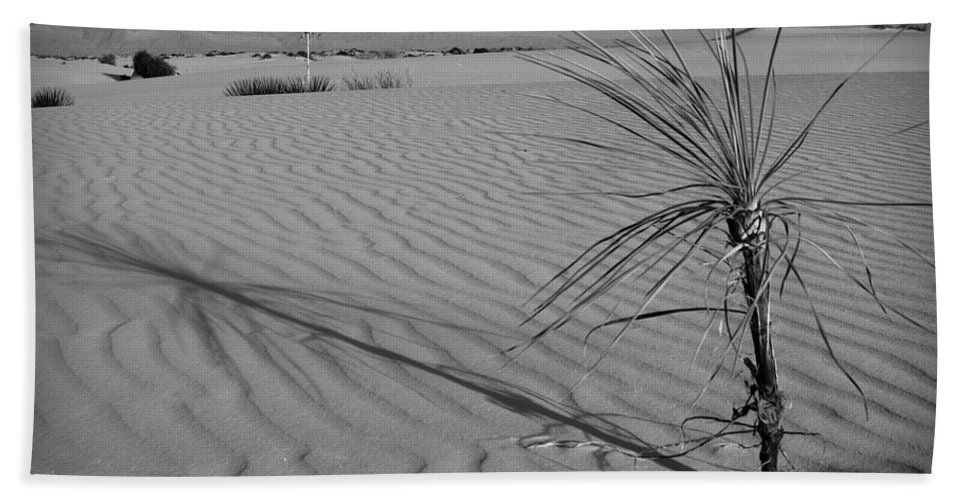 New Mexico Beach Towel featuring the photograph Yucca 2 by Sean Wray