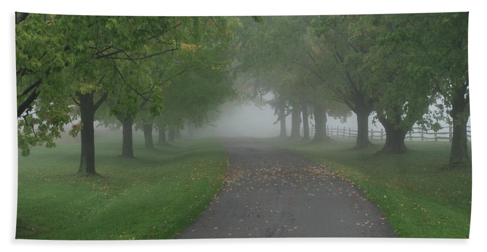Tree Beach Towel featuring the photograph Knox Fog 6038 by Guy Whiteley