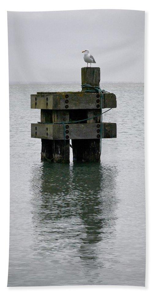 Lehtokukka Beach Towel featuring the photograph Seagull's Rest by Jouko Lehto