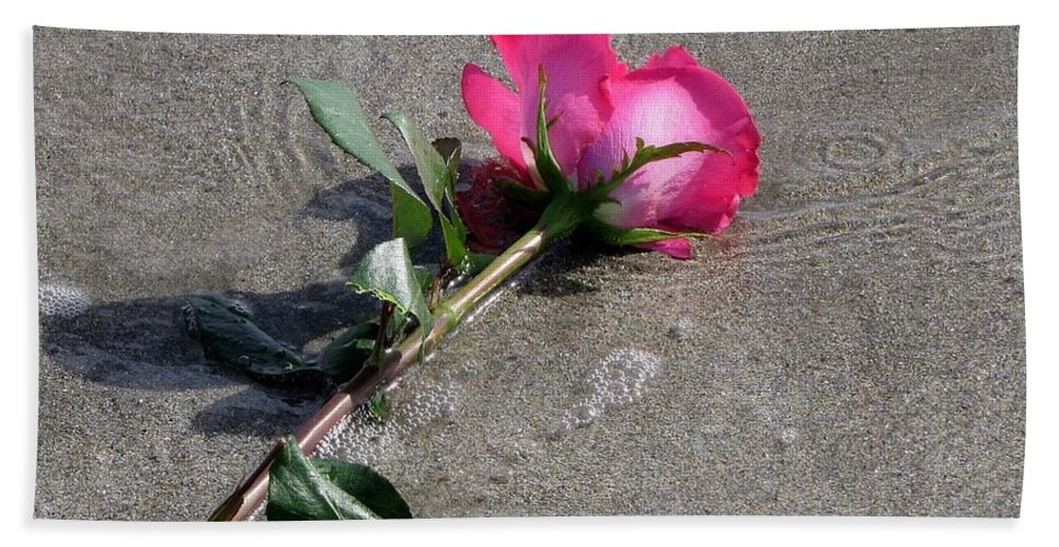 Rose Beach Towel featuring the photograph A Rose For Julie by Lori Pessin Lafargue