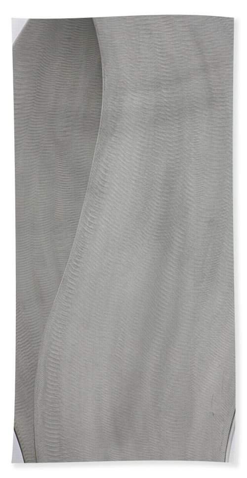 Abstracts Beach Towel featuring the photograph Abstract One Fine Art by James BO Insogna
