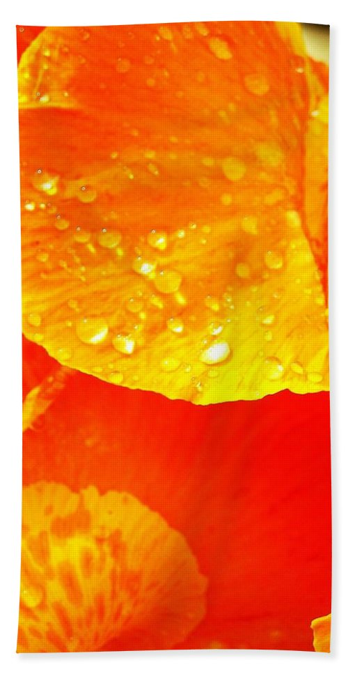 Flower Beach Towel featuring the photograph After The Rain ... by Juergen Weiss