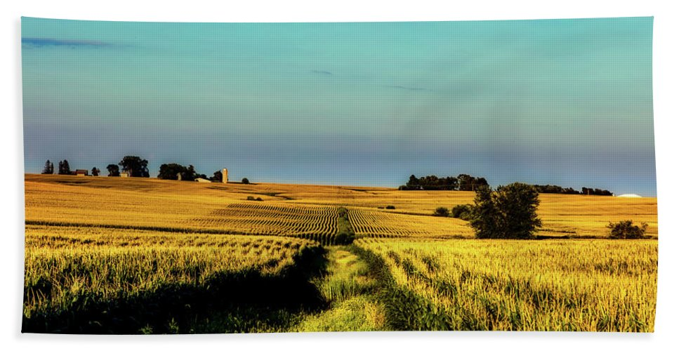 Buchanan County Beach Towel featuring the photograph Amber Waves Of Grain by Mountain Dreams