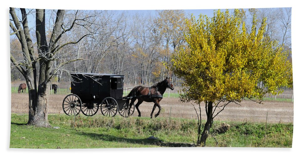 Amish Beach Towel featuring the photograph Amish Buggy Late Fall by David Arment