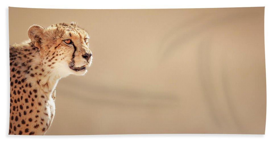 Cheetah Beach Towel featuring the photograph Cheetah Portrait by Johan Swanepoel