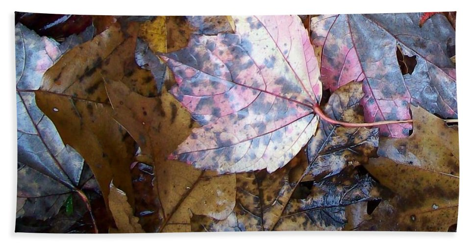 Fall Color Leaf Beach Towel featuring the photograph Colors Of The Fall by Wolfgang Schweizer