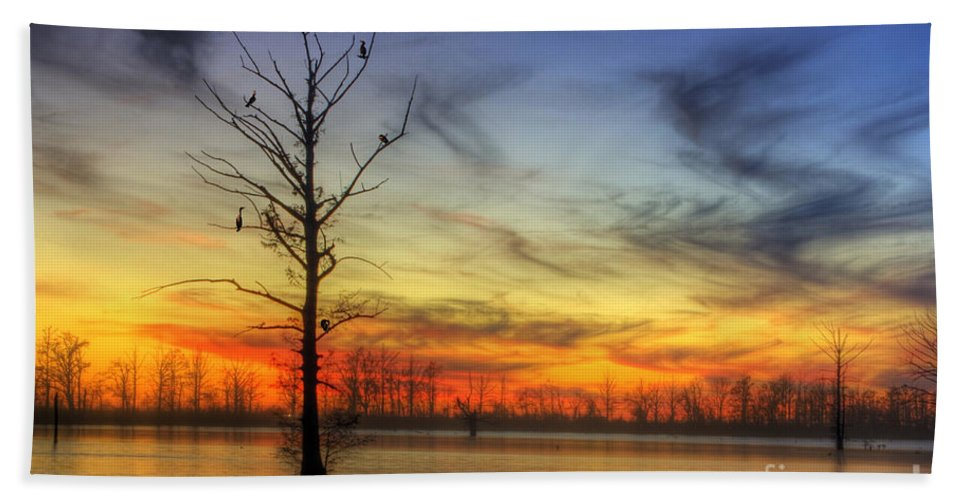 2014 Beach Towel featuring the photograph Cormorants In A Tree by Larry Braun