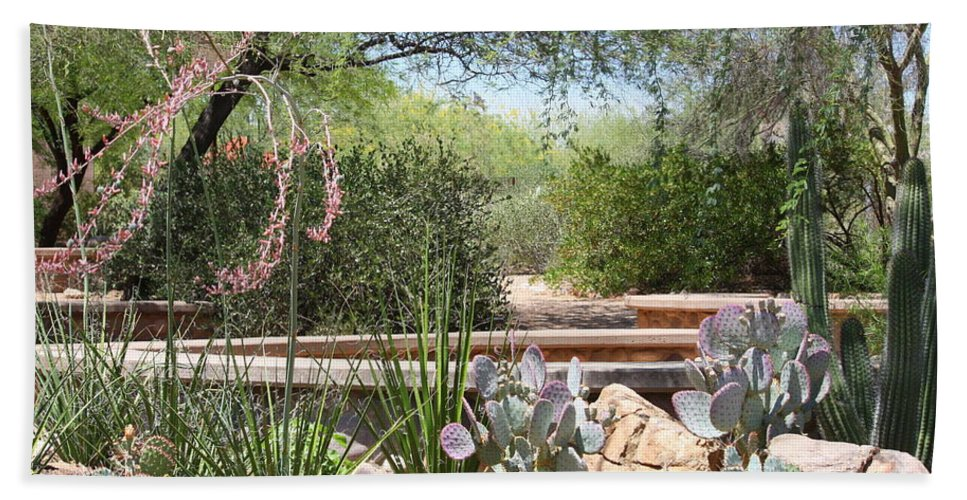 Desert Beach Towel featuring the photograph Desert Garden by Carol Groenen