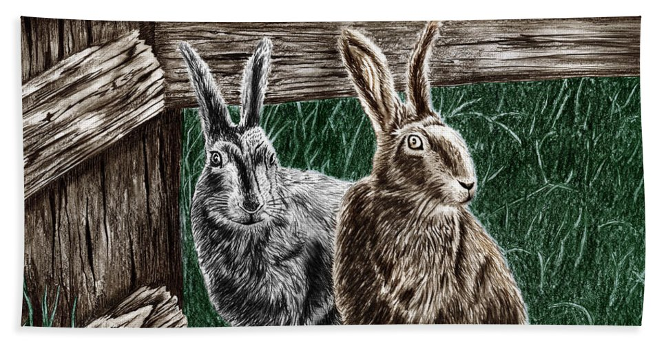 Hare Line Beach Towel featuring the drawing Hare Line by Peter Piatt