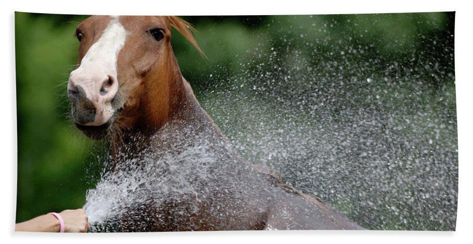 Horse Beach Towel featuring the photograph Horse Bath II by Julie Niemela