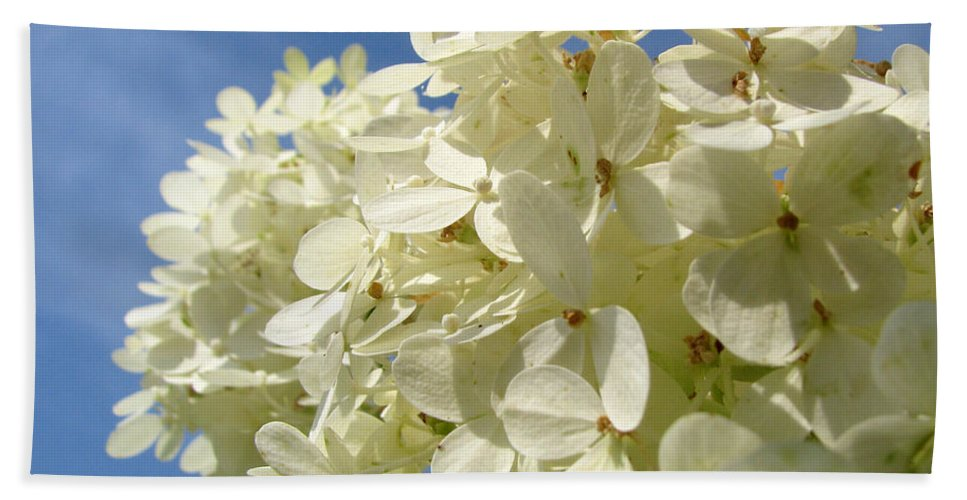 Hydranga Beach Towel featuring the photograph Hydrangea by Amanda Barcon