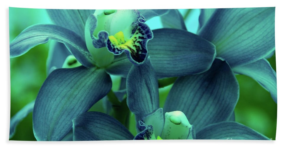 Orchids Beach Towel featuring the photograph Look At Me by Susanne Van Hulst