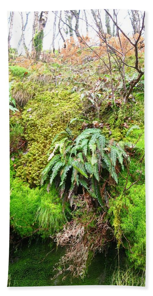 Scotland Beach Towel featuring the photograph Mossy by Maria Joy