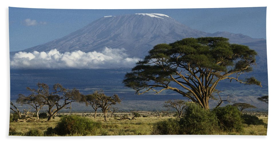 Africa Beach Towel featuring the photograph Mount Kilimanjaro by Michele Burgess