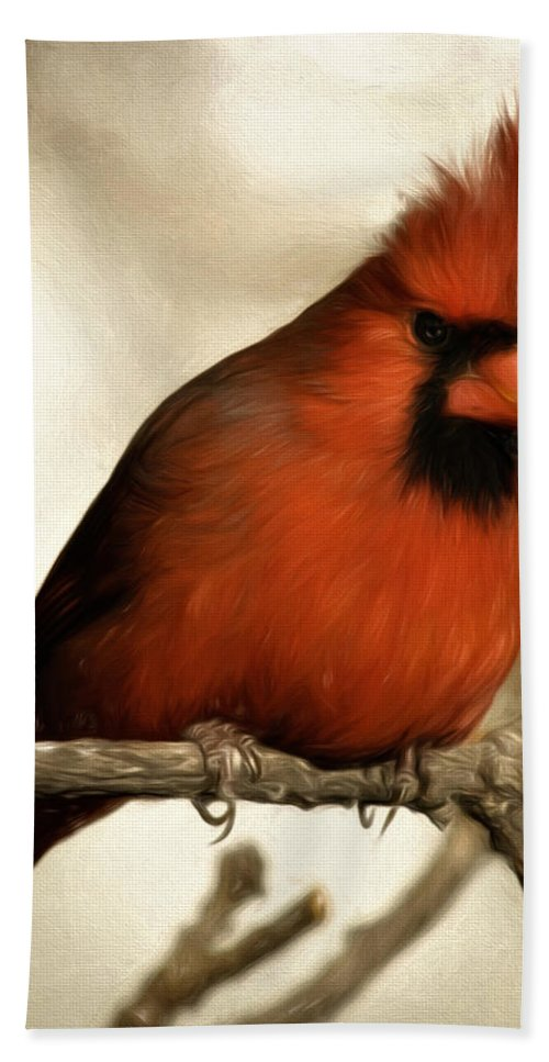 Animal Beach Towel featuring the photograph Northern Cardinal by Lana Trussell
