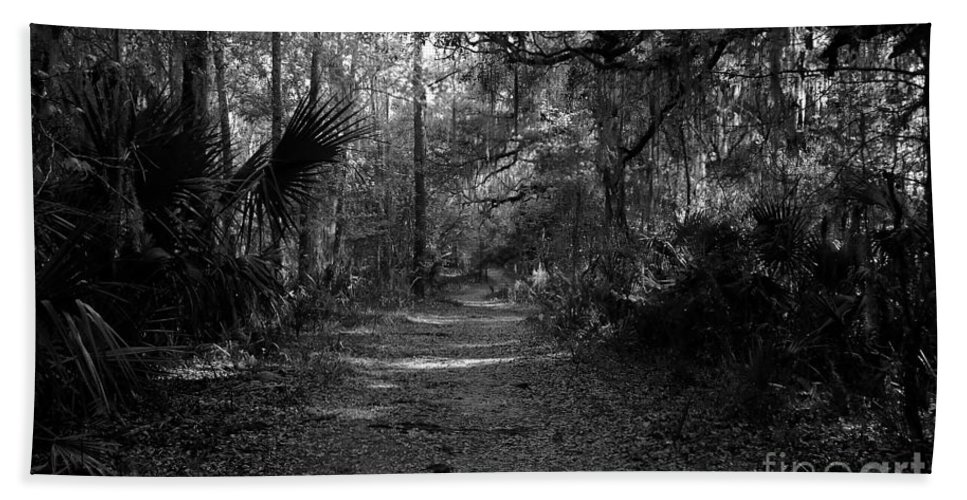 Road Beach Towel featuring the photograph Old Florida by David Lee Thompson