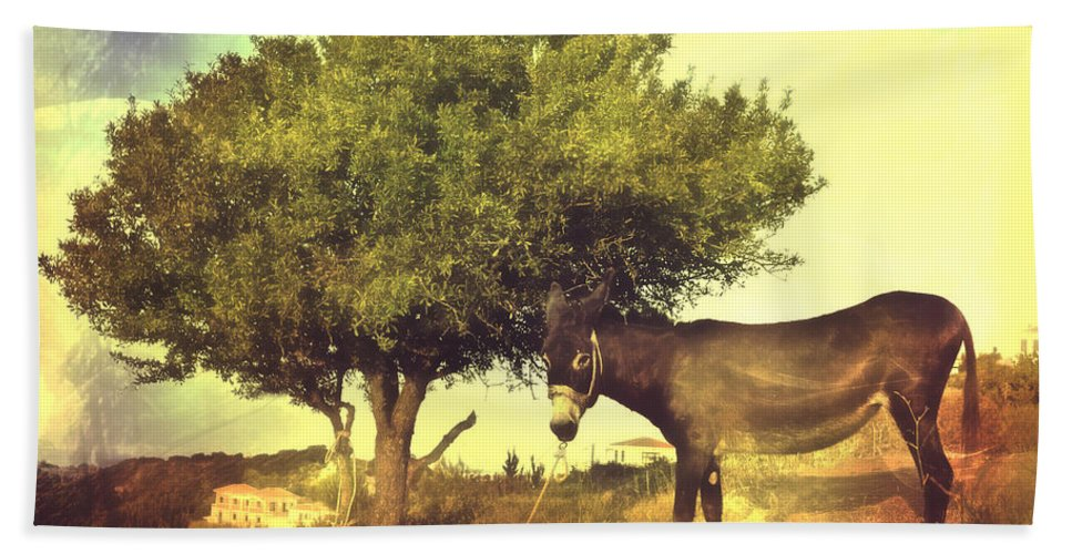 Alonissos Beach Towel featuring the photograph Pause For Thought by Tom Gowanlock