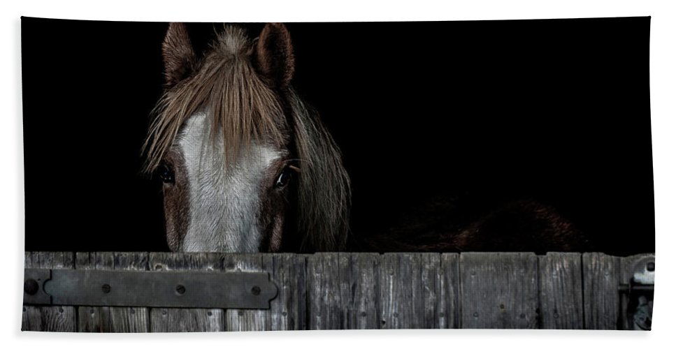 Pony Beach Towel featuring the photograph Peek A Boo by Paul Neville