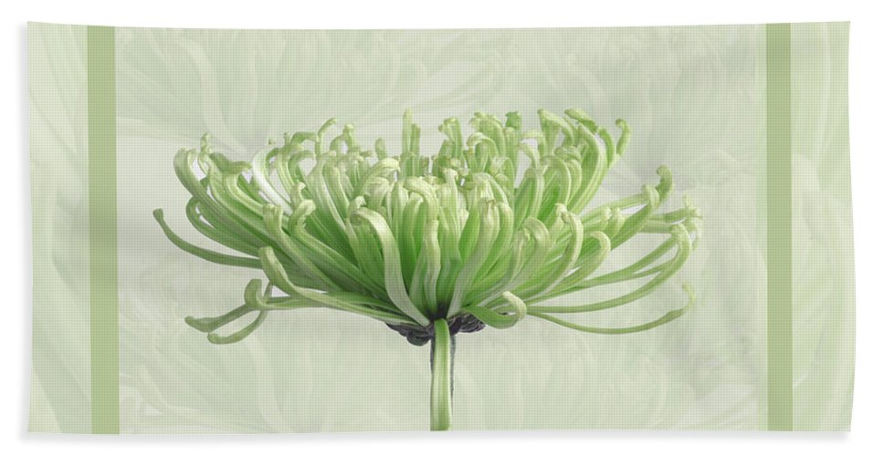 Flower Beach Towel featuring the photograph Pretty In Green by Eleanor Bortnick