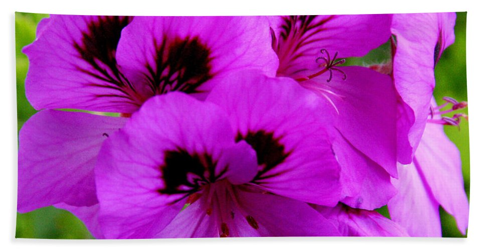 Purple Flowers Beach Towel featuring the photograph Purple Flowers by Anthony Jones