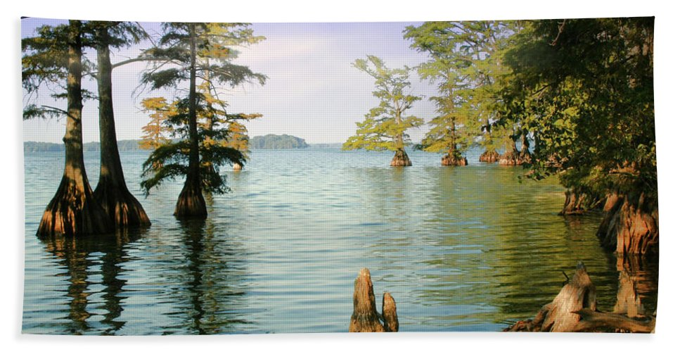 Lake Beach Towel featuring the photograph Reelfoot Lake by Bonnie Willis