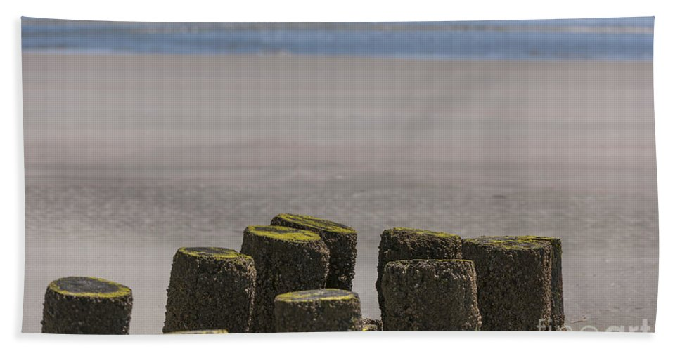 Folly Beach Beach Towel featuring the photograph Salty Shores by Dale Powell