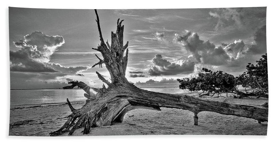 Landscapes Beach Towel featuring the photograph Sanibel Sunrise by Dennis Goodman
