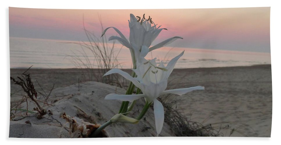 Flowers Beach Towel featuring the photograph Summer Sea Lilies by Rayne Van Sing