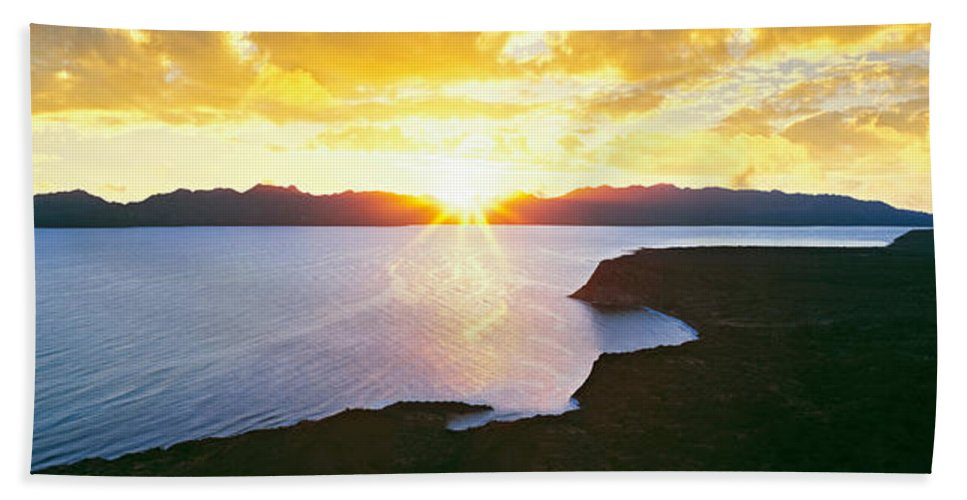 Photography Beach Towel featuring the photograph Silhouette Of Lone Cardon Cactus Plant by Panoramic Images